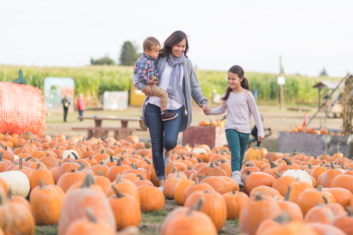 Learn the fall activities for the family